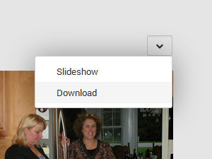 Screenshot highlighting the location of the Google+ album download option
