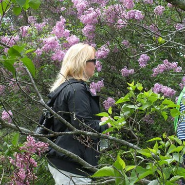 Aunt Ginger enjoys the lilacs