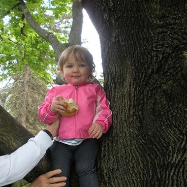 Addyson in the tree
